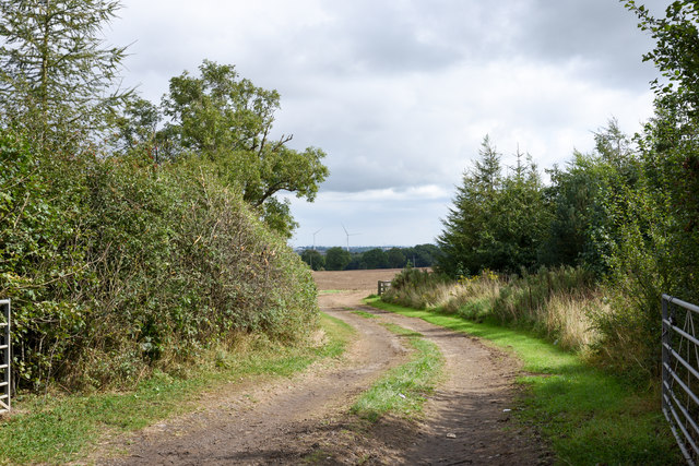Field entry from Elstob Lane