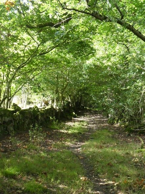 Disused track, now footpath, Wrayland Barn, Lustleigh