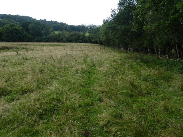 Footpath across the field, near Kelly