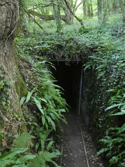 Entrance to a lode, Kelly mine