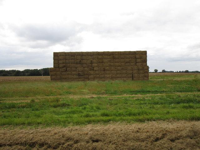 Strawstack near Bidwell Farm