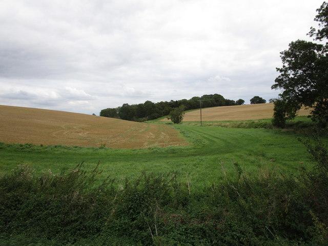 Stubble fields and White's Plantation