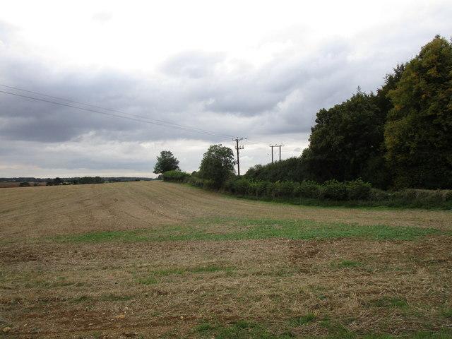 Stubble field alongside Stretton Road