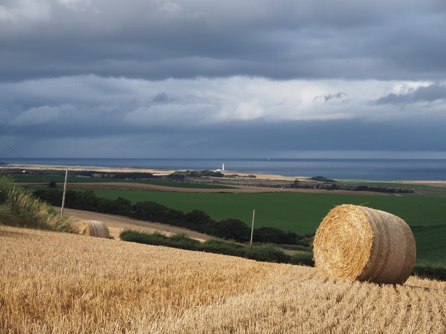 Bales at Birnieknowes Farm