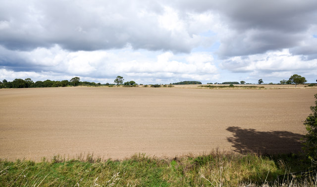 Route of public footpath across field
