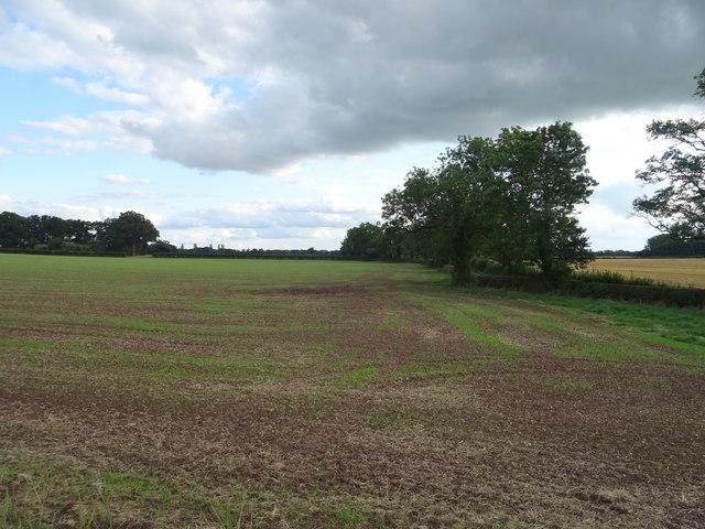 Field near Waltonbank