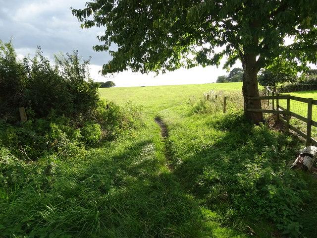 Footpath off Smithy Lane, Seighford