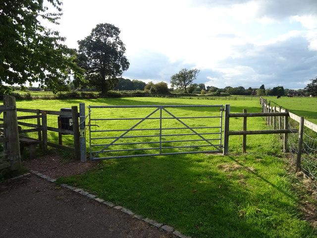 Field entrance off Smithy Lane, Seighford
