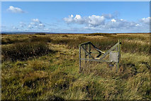 NZ7714 : Ladder trap, Newton Mulgrave Moor by Mick Garratt