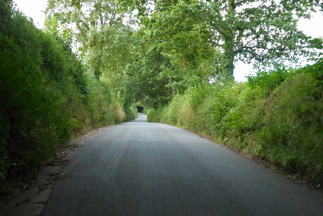 Lane from Ide to Dunchideock