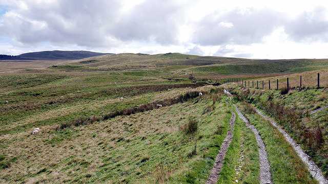 Bridleway on Pen Rhiwlas
