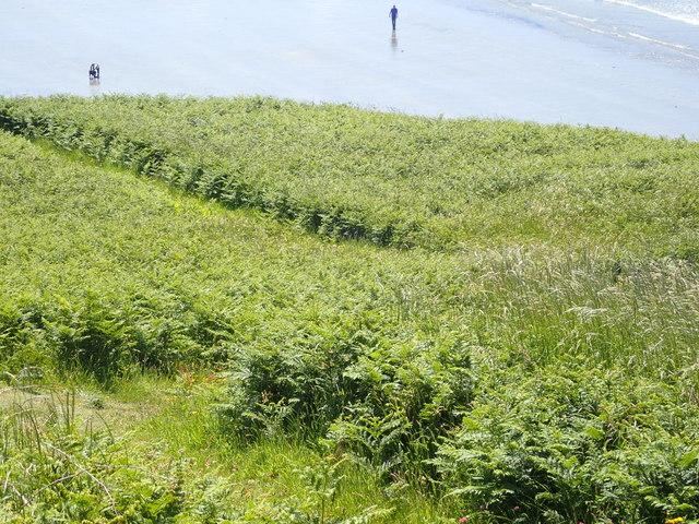 Pembrokeshire/Wales Coast Path