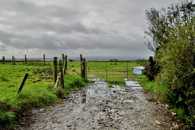 Lane's end, Glencordial