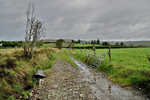 Rough lane, Glencordial