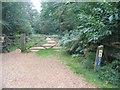 SU2200 : Cycle route in Holmsley Inclosure by E Gammie