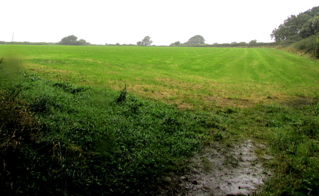 Field on the north side of Dimfields Road, St Donats