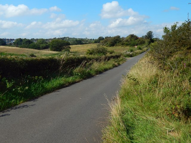 Salterland Road