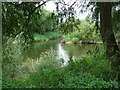SO8552 : The confluence of the River Teme and Severn by Philip Halling