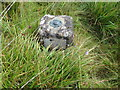 NH1558 : Ordnance Survey Fundamental Bench Mark by Peter Wood