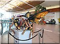 TG2208 : Big Bugs on tour - hornet by Evelyn Simak