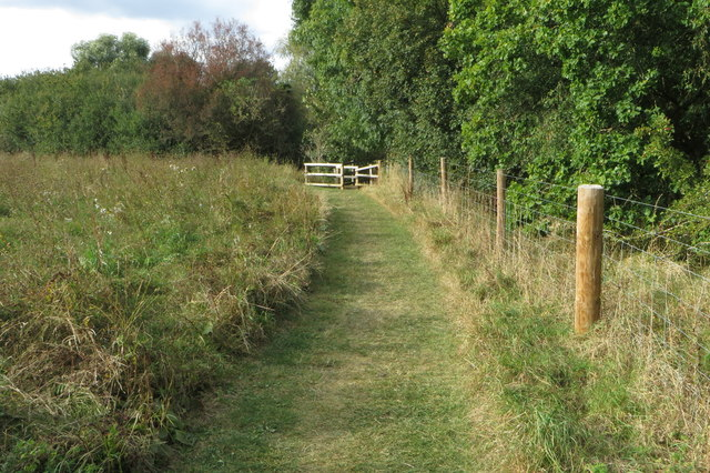 Footpath to the Rookery