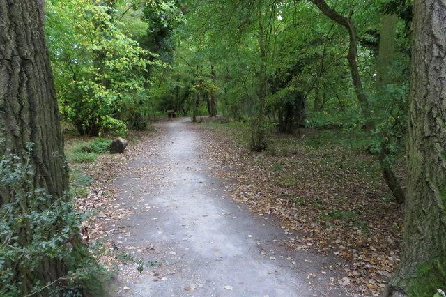 Path through Castle Close