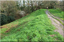 SY9287 : Poole Harbour Trail on Wareham Town Walls by Derek Harper