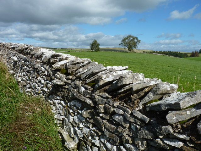 Dry stone wall and fields