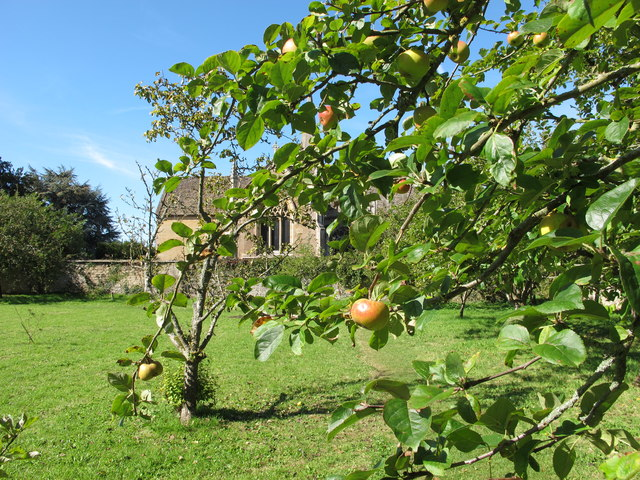 St Cyriac's church, Lacock, from apple orchard