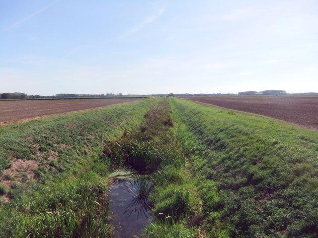Land Drain, Bonby Carrs