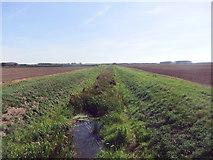 SE9914 : Land Drain, Bonby Carrs by David Brown