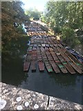 SP5206 : Moored punts by Alan Hughes