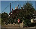 SX7256 : Postbox, Diptford by Derek Harper