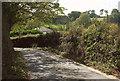 SX6554 : Lane approaching Ludbrook by Derek Harper