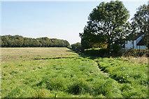 SK0512 : Path near Gentleshaw by Bill Boaden