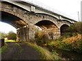 NZ2919 : Railway Bridge over River Skerne by john durkin