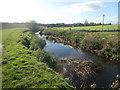 NZ3019 : River Skerne at Ketton by john durkin