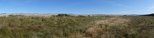 Shingle Ridges