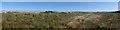 NJ3166 : Shingle Ridges by Anne Burgess