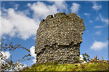 R2445 : Castles of Munster: Shanid, Limerick (4) by Mike Searle