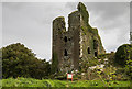 S5000 : Castles of Munster: Dunhill, Waterford (2) by Mike Searle