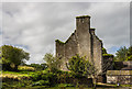 W9698 : Castles of Munster: Ballyduff, Waterford - revisited (5) by Mike Searle