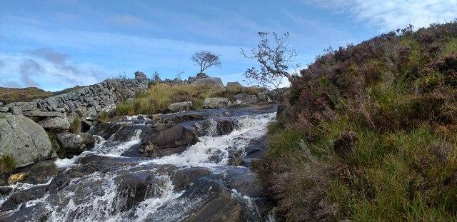 Galloway stream