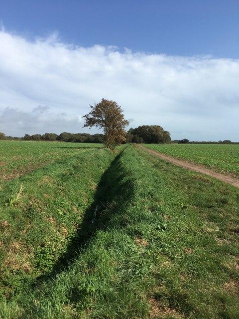 Footpath from Grange Lane to beach