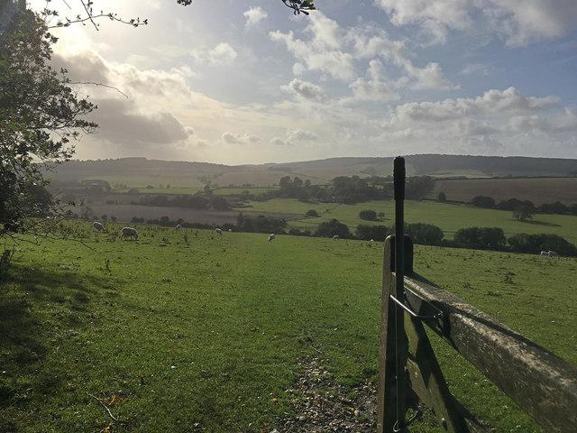 Bridleway to Binderton