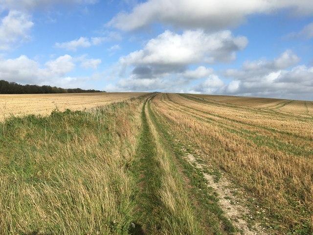 Bridleway to St Roche's Hill