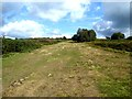 TQ4527 : A corner of Ashdown Forest by Oliver Dixon