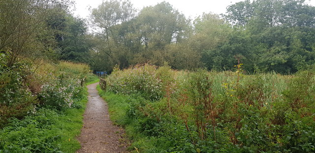 Riverside Path in Shire Country Park