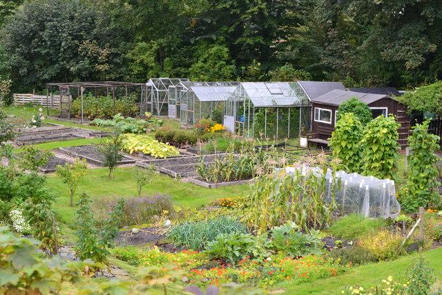 Vegetable garden at Low Wood
