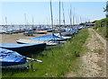 TM4249 : Suffolk Coast Path at the Orford Sailing Club by Mat Fascione